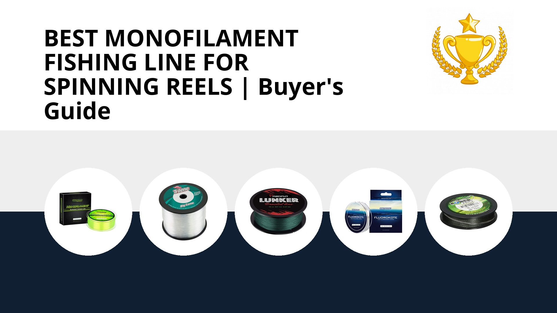 Best Monofilament Fishing Line For Spinning Reels: image