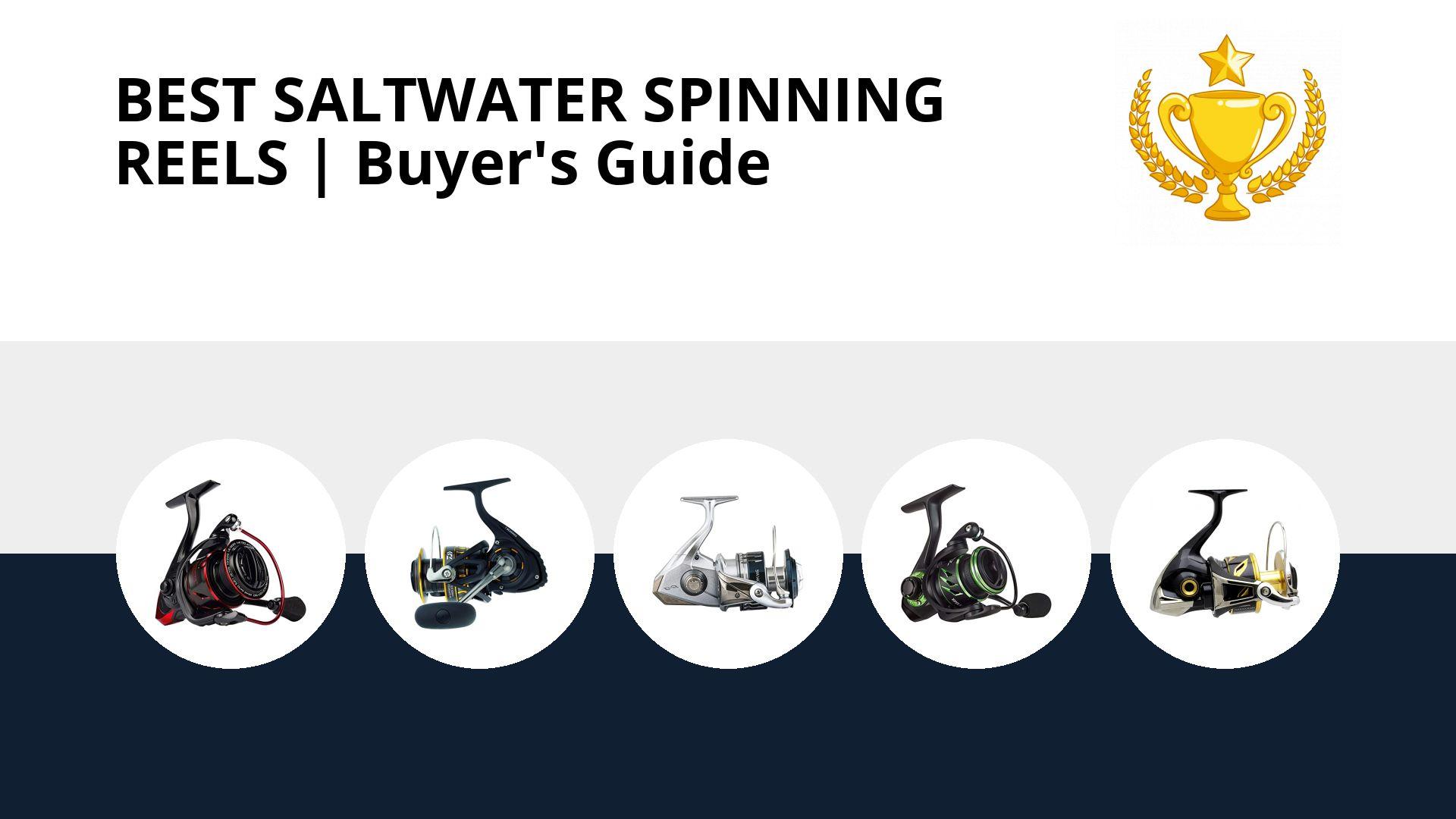 Best Saltwater Spinning Reels: image