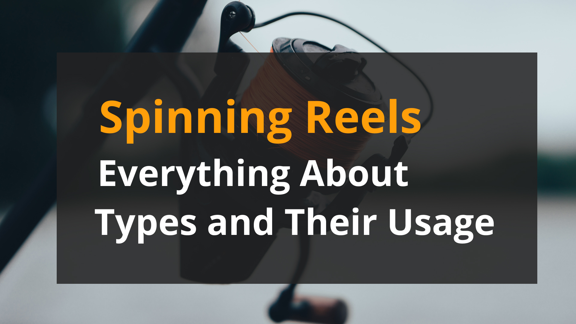 Spinning Reels – Everything About Types and Their Usage: image
