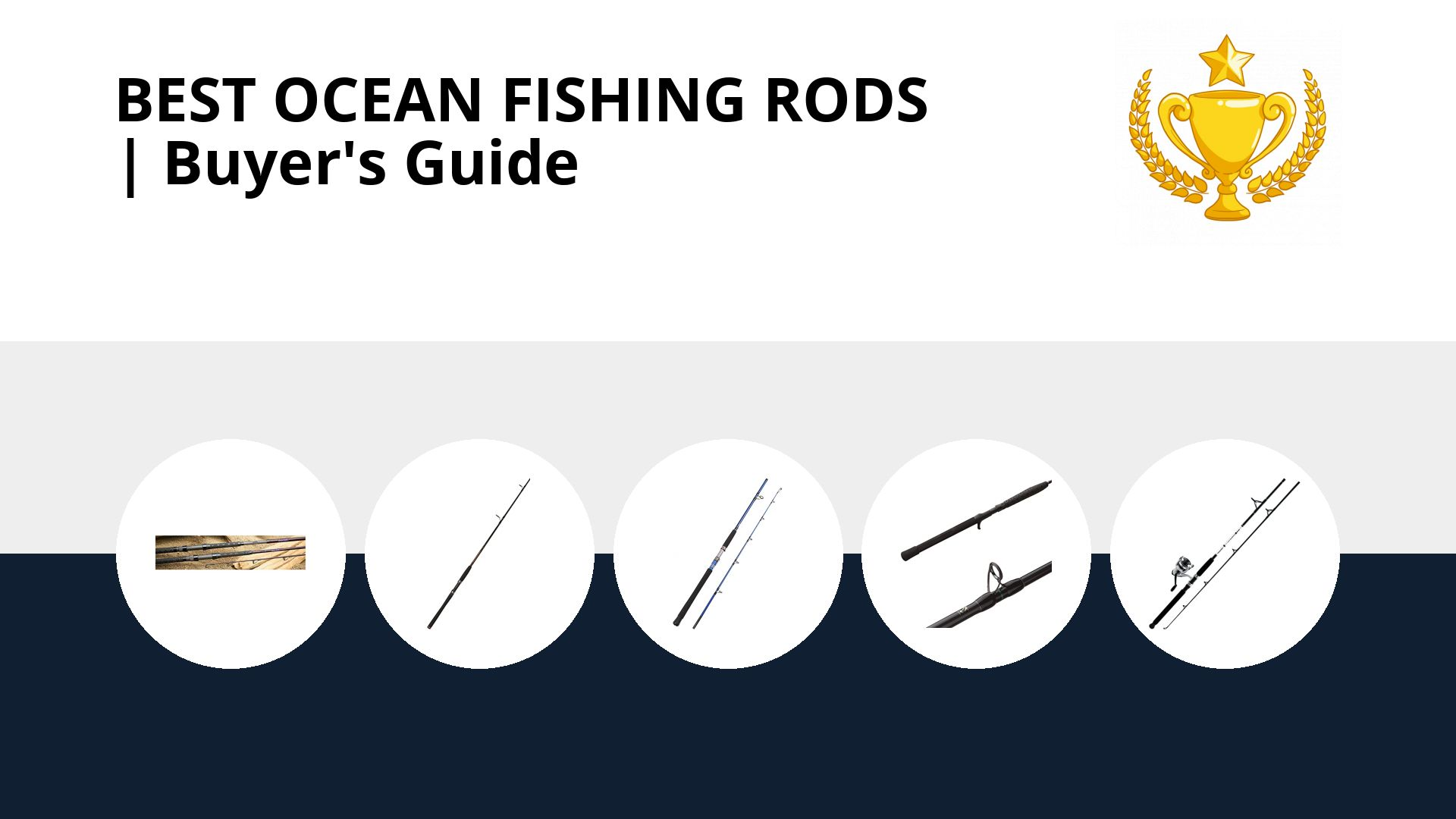Best Ocean Fishing Rods: image