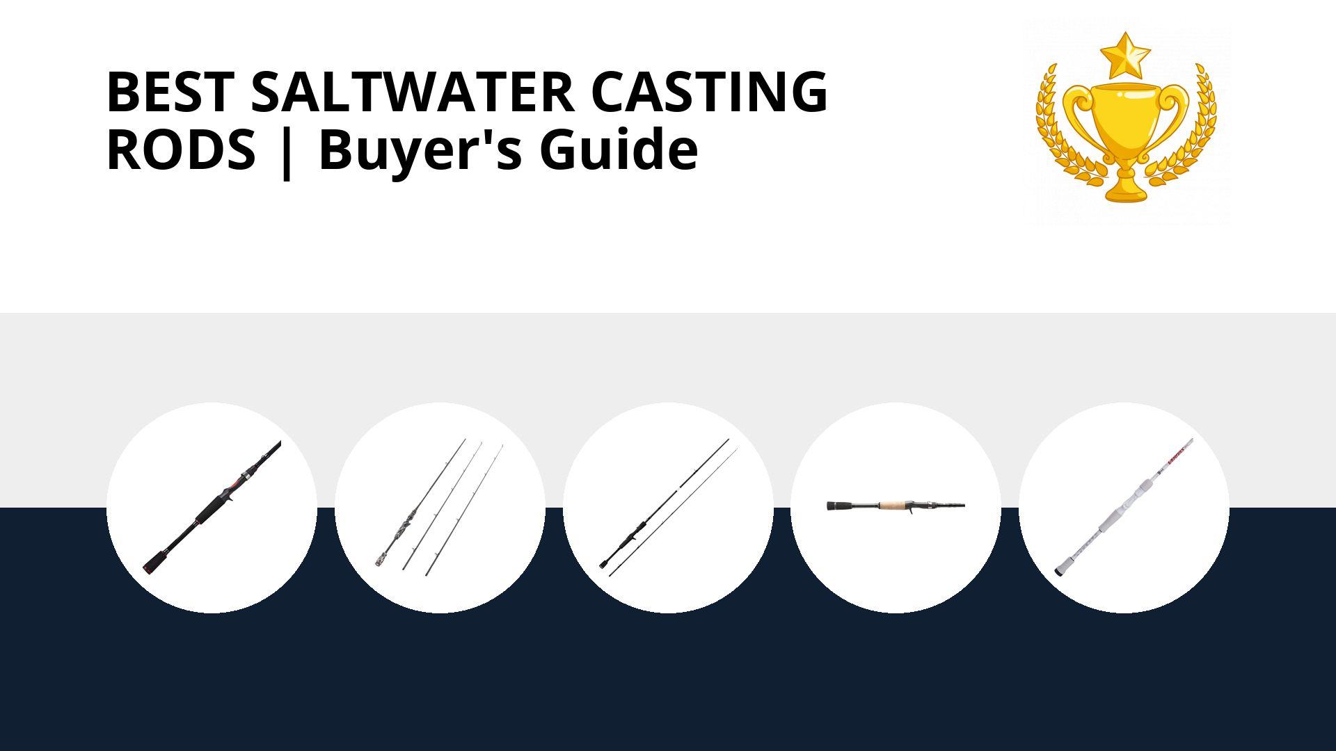 Best Saltwater Casting Rods: image