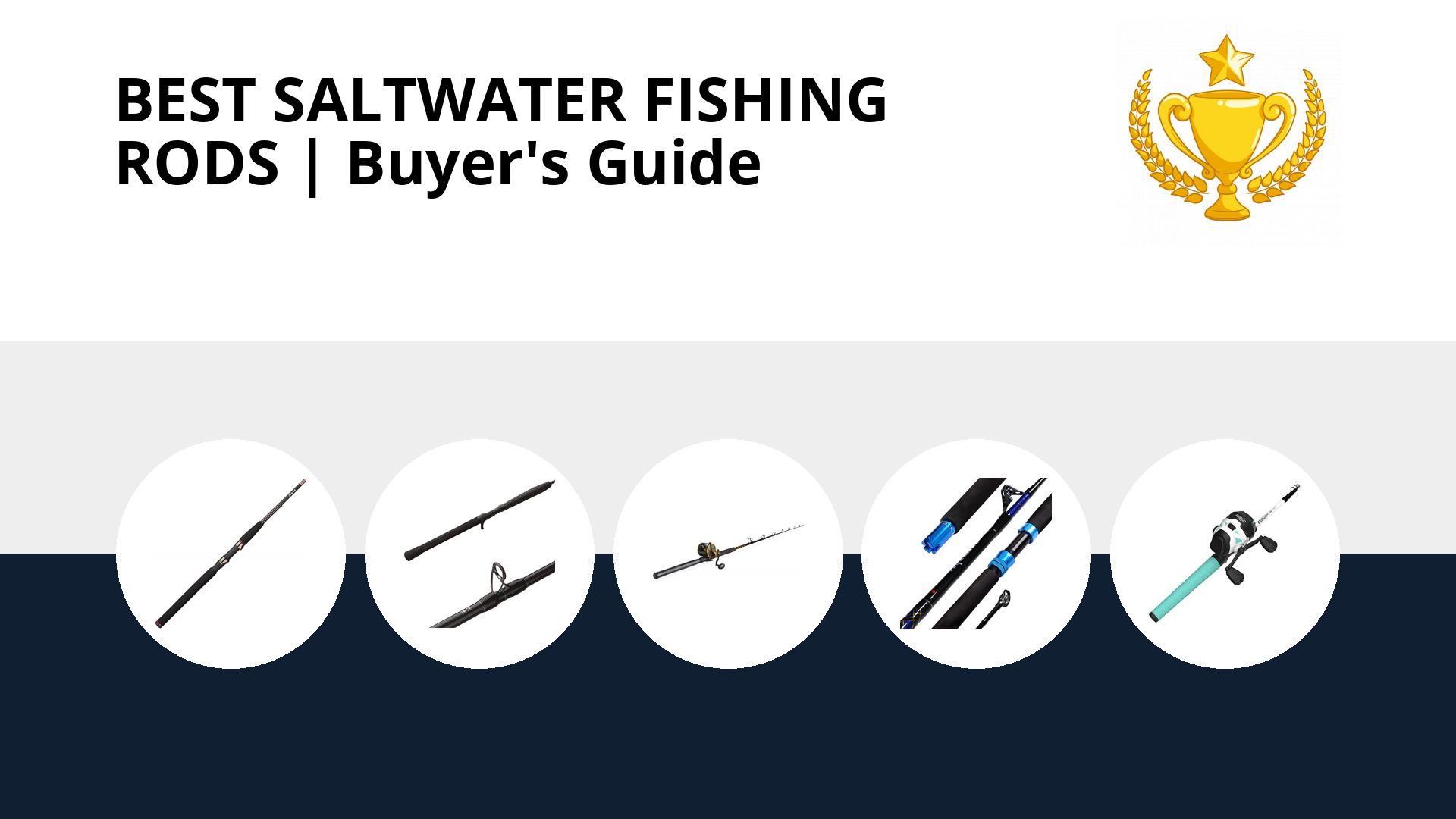 Best Saltwater Fishing Rods: image