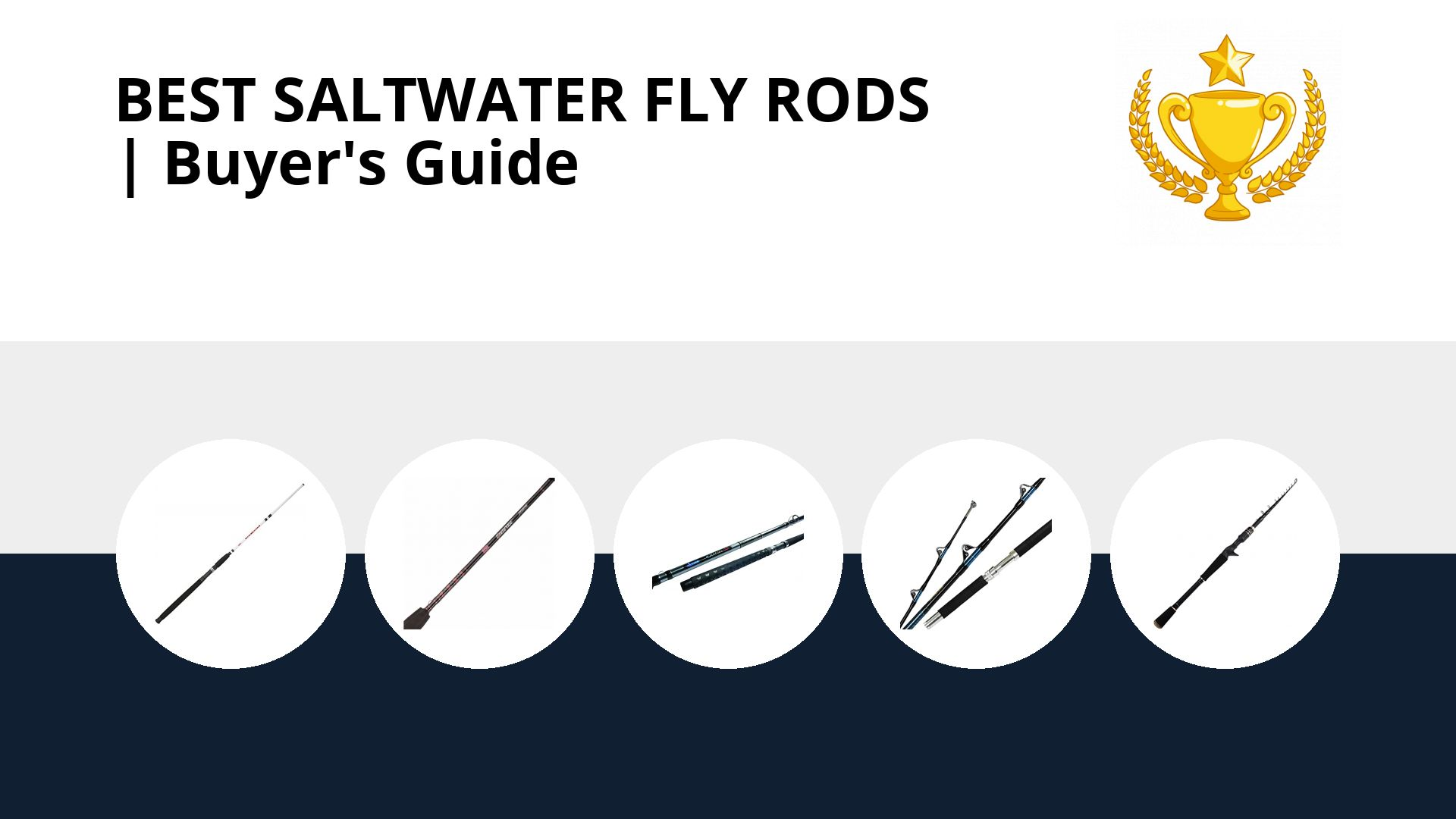 Best Saltwater Fly Rods: image